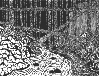 Dark Forest 2 (Touched Up).png
