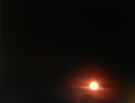 Screen Shot 2021-05-09 at 12.58.15 PM.png
