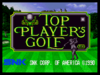 Top player golf1.png